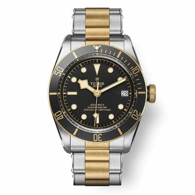 TUDOR - Black Bay S&G